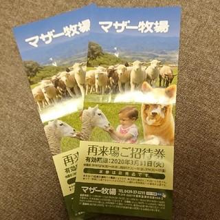 マザー牧場 再来場ご招待券 2枚セット(動物園)