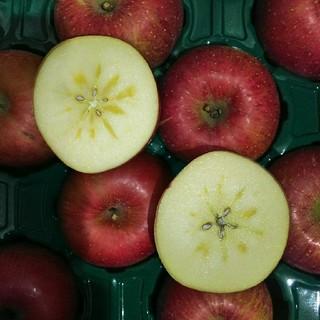 青森産  サンふじ リンゴ 家庭用 24個~36個  2段農家直送送料無料