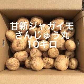 鹿児島産甘新ジャガイモ10キロ^_^(野菜)