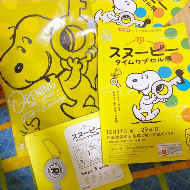 PEANUTS(ピーナッツ)のみーぽんみかん様専用出品 エンタメ/ホビーのおもちゃ/ぬいぐるみ(キャラクターグッズ)の商品写真