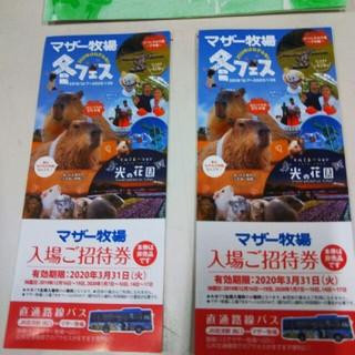 マザー牧場 2枚セット 招待券(動物園)