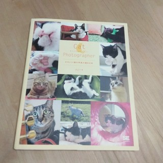ショウエイシャ(翔泳社)のCat photographer かわいい猫の写真が撮れる本(趣味/スポーツ/実用)