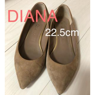 DIANA - DIANA パンプス 22.5