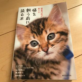 猫を飼う前に読む本 猫専門医が教える(住まい/暮らし/子育て)