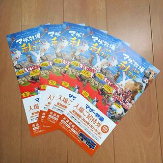 マザー牧場 入場券 チケット 招待券 5枚(遊園地/テーマパーク)