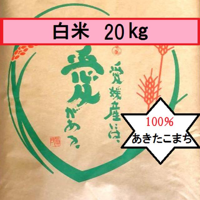 お米 令和元年 愛媛県産あきたこまち 白米 20㎏ 食品/飲料/酒の食品(米/穀物)の商品写真