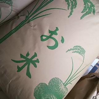 令和元年度・岩手県花巻産減農薬ひとめぼれ24kg(玄米)