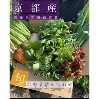 新鮮野菜詰め合わせ!!露地栽培 京都 無農薬 減農薬 お届けします!(野菜)