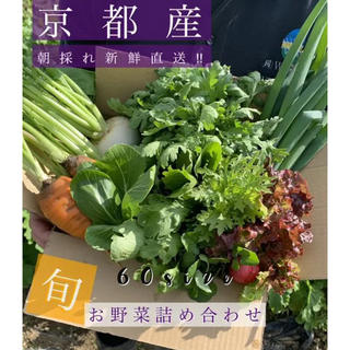 新鮮野菜をお届け!!京都 露地栽培 無農薬 減農薬野菜!(野菜)