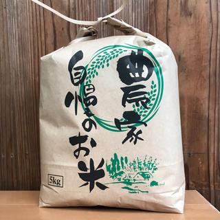 農家直送  おいしいお米 三重県産コシヒカリ  100% 5kg