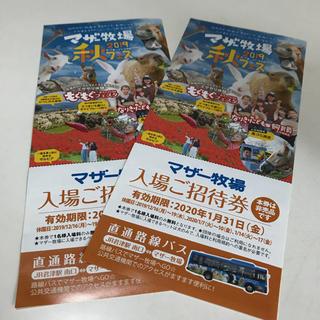 マザー牧場 入場 招待券 2枚(遊園地/テーマパーク)