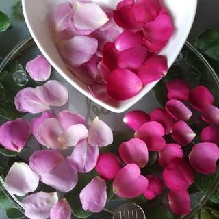 バラの花びら:2カラー(ドライフラワー)