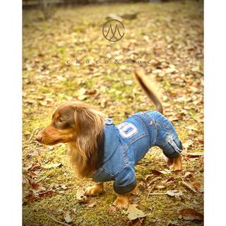 ドッグウェア 裏ボア デニムロンパース 犬服