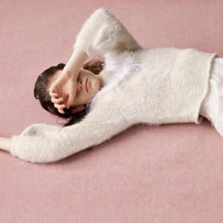 ファーファー(fur fur)のFURFUR フェザーヨークプルオーバー(ニット/セーター)