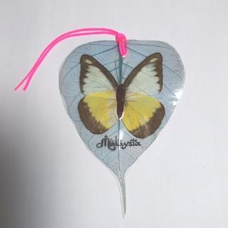 蝶々🦋バタフライ 標本🔖栞 マレーシアお土産品(しおり/ステッカー)