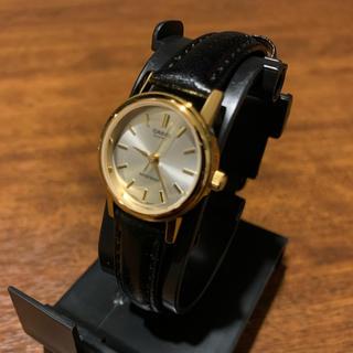カシオ(CASIO)のSonny Label CASIOLTP-1095Q-7A 腕時計 新品/未使用(腕時計)