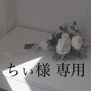 オフホワイト(OFF-WHITE)のちぃ様 専用(パーカー)
