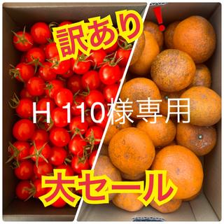 H 110様専用 訳あり❗️幻のみかん 2kg  キャロルセブン1kg(フルーツ)