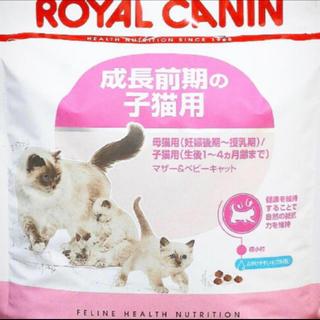 ロイヤルカナン(ROYAL CANIN)のロイヤルカナン マザー&ベビーキャット  計量カップ付(ペットフード)