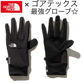 THE NORTH FACE - L ノースフェイス × ゴアテックス イーチップグローブ 手袋 NN61915