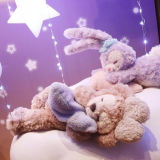 Disney - 【新品】パーク完売❤︎東京ディズニーシー限定❤︎ステラ・ルー&シェリーメイ