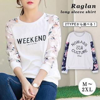 ラグランロンT  AタイプMなし BタイプM、Lなし (Tシャツ(長袖/七分))