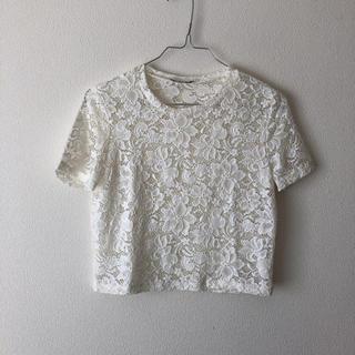 ザラ(ZARA)のZARA BASIC レース Tシャツ 未使用(Tシャツ(半袖/袖なし))