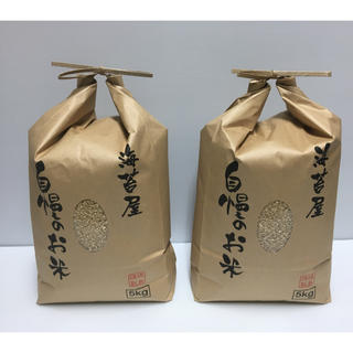 無農薬 玄米 コシヒカリ 10kg(5kg×2袋)令和元年 徳島県産(米/穀物)