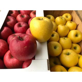 リンゴふじ、シナノゴールド、詰め合わせ、3キロ、秀品(フルーツ)