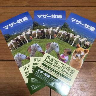 マザー牧場 ご招待券 3枚セット(動物園)