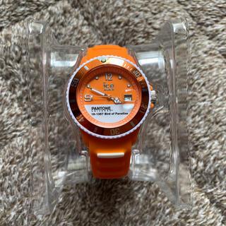 アイスウォッチ(ice watch)のicewatch PANTONEUNIVERSE(腕時計)