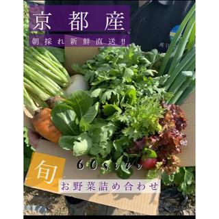 新鮮野菜詰め合わせ!京都 露地栽培 無農薬 減農薬野菜をお届け!(野菜)