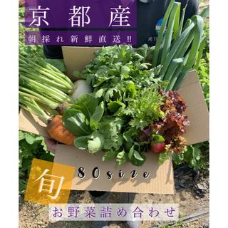 新鮮野菜詰め合わせ!京都 露地栽培 無農薬 減農薬野菜をお届け(野菜)
