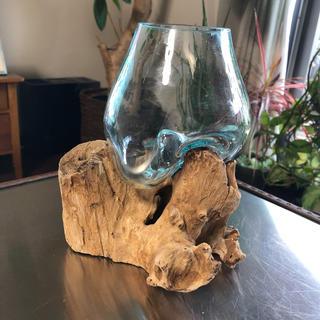 バリ島 流木花瓶 多肉植物 テラリウム  エアプランツ 雑貨
