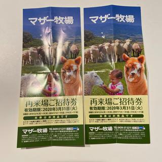 マザー牧場 入園券 2枚セット(遊園地/テーマパーク)
