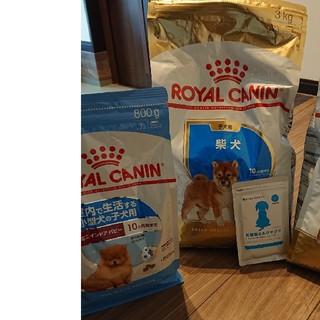 ロイヤルカナン(ROYAL CANIN)のロイヤルカナン 子犬用 3キロ 室内犬用 800g (ペットフード)