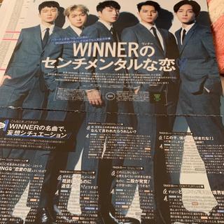WINNER 切り抜き(アート/エンタメ/ホビー)