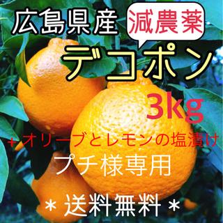 【プチ様専用】減農薬 もぎたて デコポン 3キロ ノーワックス 広島県(フルーツ)