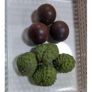 旬です。沖縄産 アテモヤとパッションフルーツセット ♪(フルーツ)