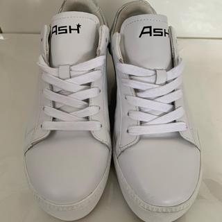 ASH - ASH スニーカー 画像確認用