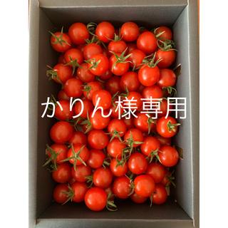 かりん様専用 完熟濃厚ミニトマト  2kg ☆キャロルセブン☆ 農家直送(野菜)