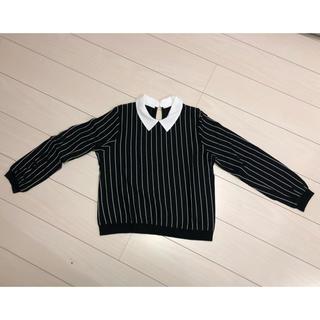 アベイル(Avail)のシャツ襟付きプルオーバー(カットソー(長袖/七分))