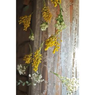 優しい光に・ミモザモビール○ドライフラワーガーランド・mobile*mimosa(ドライフラワー)