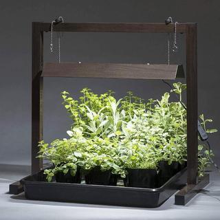 植物育成ライト(スタンド付き)・グリーントラッグ LGT-01BR/タカショー(その他)