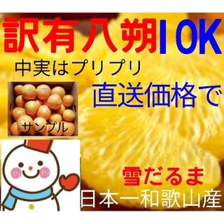 特売❗訳有♥ひかり八朔10㌔♥和歌山はっさく 雪だるまハッサク(フルーツ)