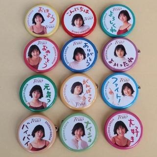 アサヒ(アサヒ)の広末涼子 缶バッジ 12個(アイドルグッズ)