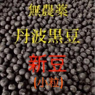 無農薬 丹波黒豆 小粒(野菜)