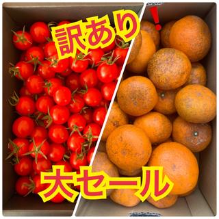 パン様専用訳あり❗️幻の河内みかん 2kg  キャロルセブン500g (フルーツ)
