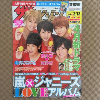 ザ テレビジョン 2016 2/12号(その他)