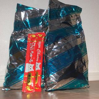 ネスレ(Nestle)のピュリナワン 子ねこ用 チキン 550g×2袋(猫)